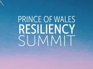 POW Resiliency Summit 2020